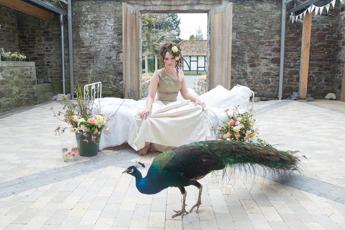 Dartmoor wedding venue