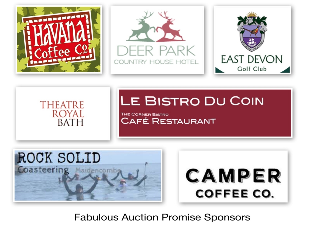 auction sponsors