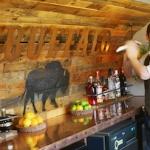 Buffalo Image 4