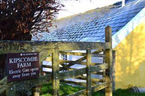 Rustic barn wedding devon 4